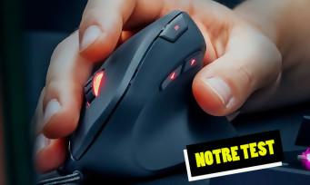 Test Trust Gaming GXT 144 Rexx : une souris verticale gamer qui a du chien ?