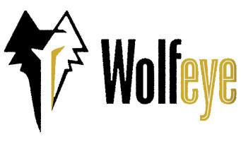 WolfEye : le cofondateur d'Arkane (Dishonored, Prey) lance un studio indépendant