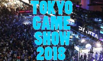 Tokyo Game Show 2018 : le salon bat son record de fréquentation, une vraie réussite !
