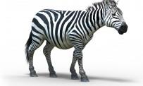 TGS > Afrika : un safari d'images