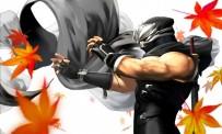Dead or Alive 3DS reporté au Japon