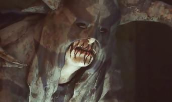 """Dragon Age Inquisition : un nouveau trailer pour le DLC solo """"Crocs d'Hakkon"""""""