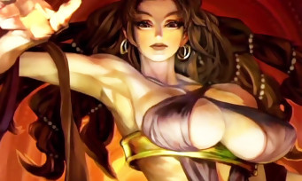 Dragon's Crown Pro : toutes les nouveautés de la version 4K détaillées en vidéo