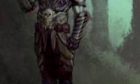 Dungeon Siege II : Broken World imag