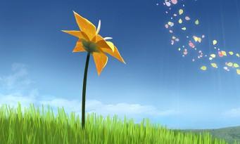 Flower : après 10 ans d'exclusivité, le jeu débarque sur PC !