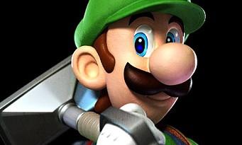 Nintendo : 30 ans de Luigi en une seule image