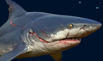 ManEater : un DLC est confirmé, de nouveaux requins tueurs ?