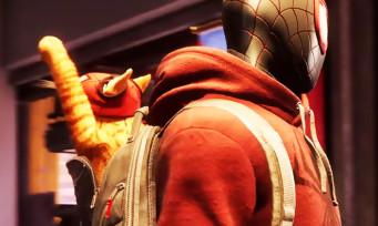 Spider-Man Miles Morales : Spider-Cat sera de la partie, la preuve dans ce gameplay en 4K