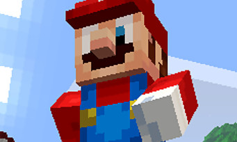 Minecraft : le jeu arrive bientôt sur New 3DS, voici les premières infos sur le jeu