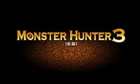 GC 09 > Monster Hunter 3 s'affiche