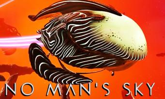 No Man's Sky : une mise à jour pour créer son propre vaisseau organique, la classe interplanétaire