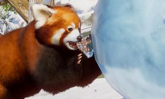 Planet Zoo : le pack Arctique en approche, voilà ce qu'il contient