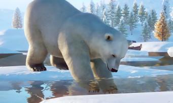 Planet Zoo : le pack Arctique est disponible sur PC, voilà le trailer de lancement