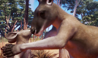 Planet Zoo : l'Australie est désormais dispo en DLC, de nouveaux animaux à découvrir