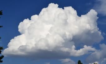 Sea of Thieves : la tête dans les nuages