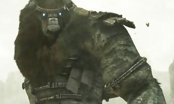 E3 2017 : un remake pour Shadow of the Colossus sur PS4, voici le trailer magnifique !