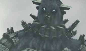 Shadow of the Colossus PS4: Fumito Ueda espère que Sony suivra ses conseils