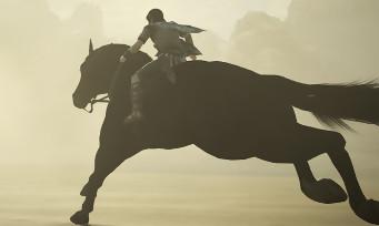 Shadow of the Colossus : 5 min de gameplay qui révèlent des graphismes somptueux