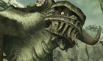Shadow of the Colossus : découvrez les 15 premières minutes du jeu