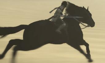 Shadow of the Colossus (PS4) : le mode Photo détaillé et commenté par les développeurs