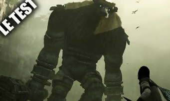 Test Shadow of the Colossus (PS4) : le chef d'oeuvre absolu sublimé
