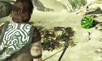 Shadow of the Colossus : un easter egg de ICO se cache dans le jeu, voici comment le trouver