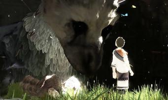 The Last Guardian : il arrive sur PS4 pour début 2016, c'est sûr !