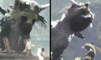 The Last Guardian : comparatif E3 2015 VS Tokyo Game Show 2016, voici ce qui a changé