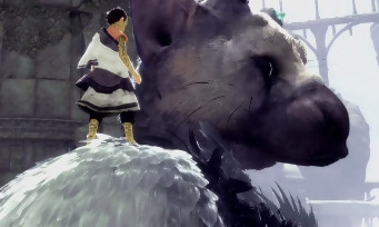 The Last Guardian : quand le comportement de Trico est comparé à celui d'un véritable animal