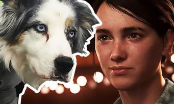 The Last of Us 2 : une nouvelle photo de tournage avec des chiens en tenue de mocap