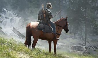 The Last of Us 2 : des illustrations qui claquent, c'est en édition limitée et on peut les acheter