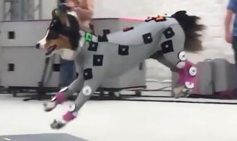 The Last of Us Part II : Naughty Dog montre une session de motion capture avec les chiens