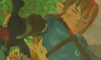 Zelda Breath of the Wild : il y aura une deuxième fin dans le jeu !