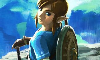 Zelda Breath of the Wild : le jeu aura une saveur très spéciale sur Wii U