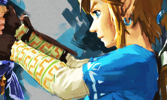 Test Zelda Breath of the Wild sur Nintendo Switch