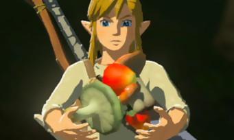 Zelda Breath of the Wild : voici la soluce pour faire toutes les recettes du jeu