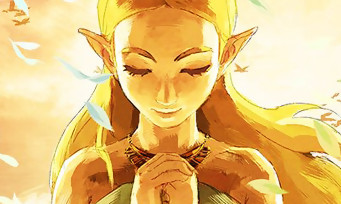Zelda Breath of the Wild : il finit le jeu en 65 min et le prouve en vidéo !