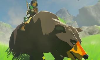 Zelda Breath of the Wild : il existe un ours brun dans Hyrule et on peut le chevaucher !