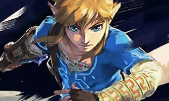 Zelda Breath of the Wild : une nouvelle mise à jour disponible, voilà ce qu'elle apporte