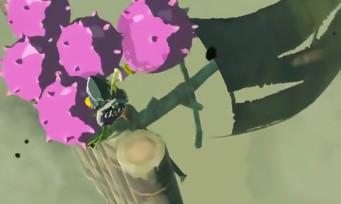 Zelda Breath of the Wild : on peut transformer un radeau en montgolfière, voici l'astuce en vidéo
