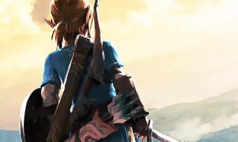 Zelda Breath of the Wild : une vidéo avant-après pour le patch qui améliore le framerate du jeu