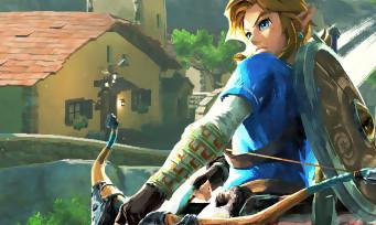 Zelda Breath of the Wild : voici comment faire pour acheter une maison à Link et la décorer