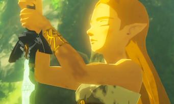 Zelda Breath of the Wild : un Français finit le jeu à 100% en jouant 49h non-stop et le prouve en vidéo !