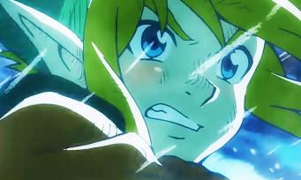 Zelda Link's Awakening : une belle fournée d'images colorées, une DA qui divise ?