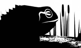 The Unfinished Swan bientôt sur PS4 et PS Vita ?