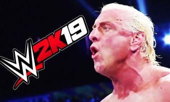 WWE 2K19 : découvrez l'édition Wooooo! qui célèbre Ric Flair, une vidéo testostéronée